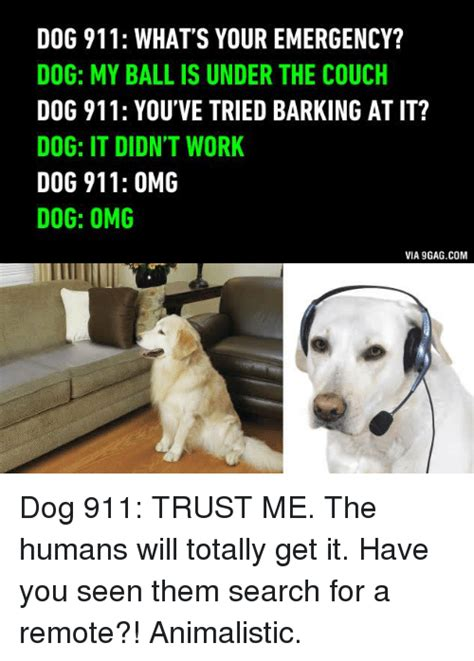 Dog Barking Meme - dog 911 what s your emergency dog my ball is under the