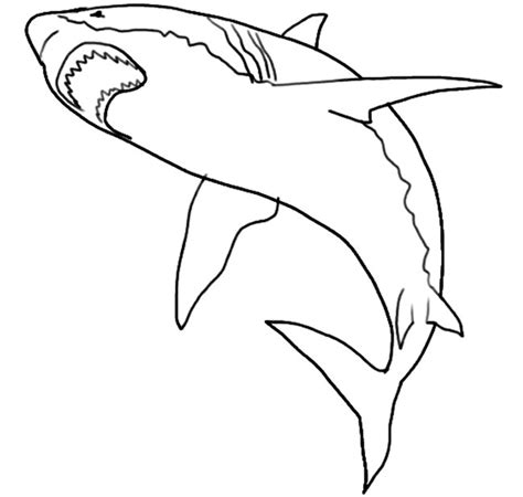 shark template 55 shark shape templates crafts colouring pages free