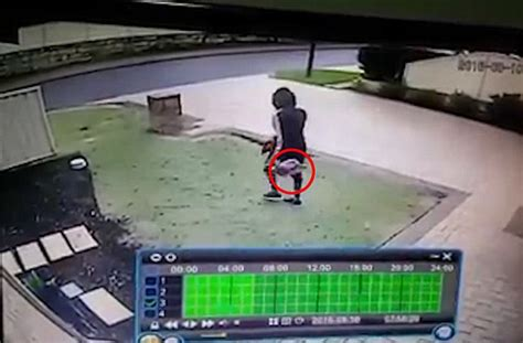 door to door parcel delivery australia as a thieving steals a parcel from the