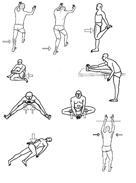 diagram of stretches