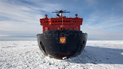 the stowaway a s extraordinary adventure to antarctica books an extraordinary new antarctica photography safari elite