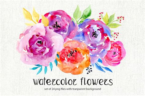Rose Paint Colors by Watercolor Flowers 24 Png Clipart Illustrations On