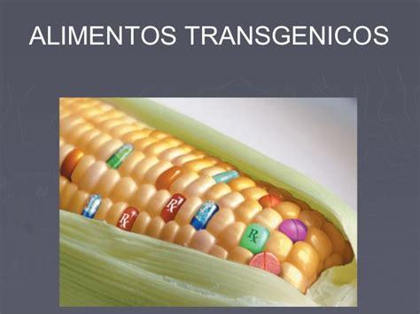 alimentos transgenicos alimentos transgenicos conf