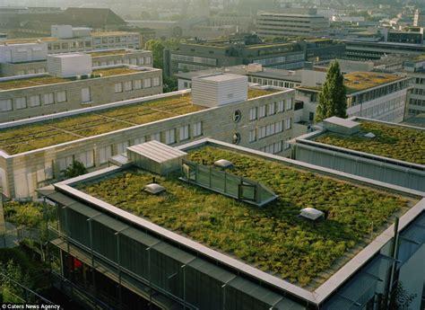 beautiful roof gardens simply amazing
