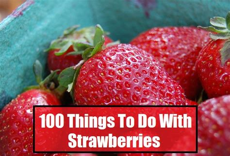 100 things to do with strawberries