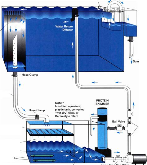 Aquarium Overflow Plumbing by Reef Tank Filtration Reef Aquariums Gibell Aquarium