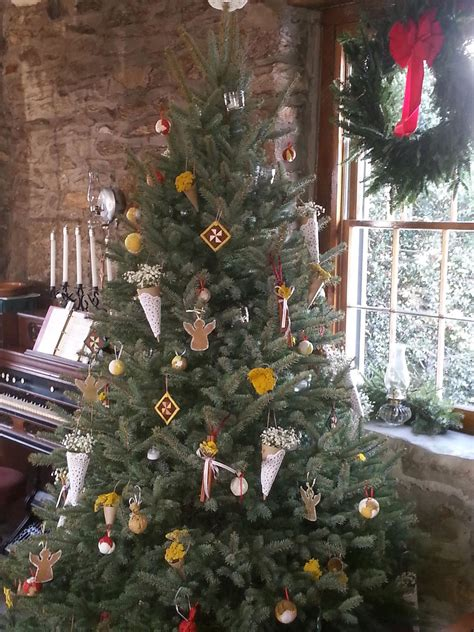 gallery of christmas trees hagerstown md fabulous homes
