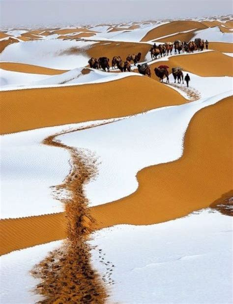 sahara desert snow winter snow on the sahara desert morocco pinterest