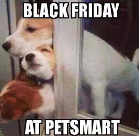 black friday 2015 best funny memes heavy com page 12