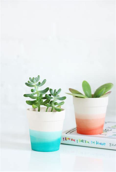 cute succulent pots 25 creative diy planter projects