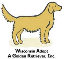 golden retriever club wisconsin national rescue committee of the golden retriever club of america