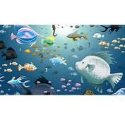 Water Fish Wallpaper  WallpaperSafari