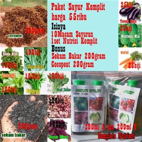 Harga Sayur Organik by Griya Hidroponikku Paket Bertanam Sayur Organik Harga 55ribu