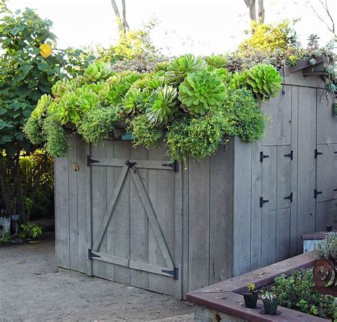 shed roof ideas  pinterest shed plans small