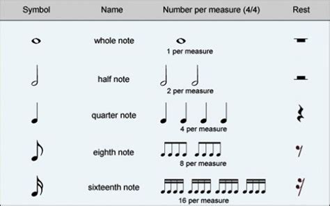 rhythmic pattern notes a basic guide to musical notation hubpages