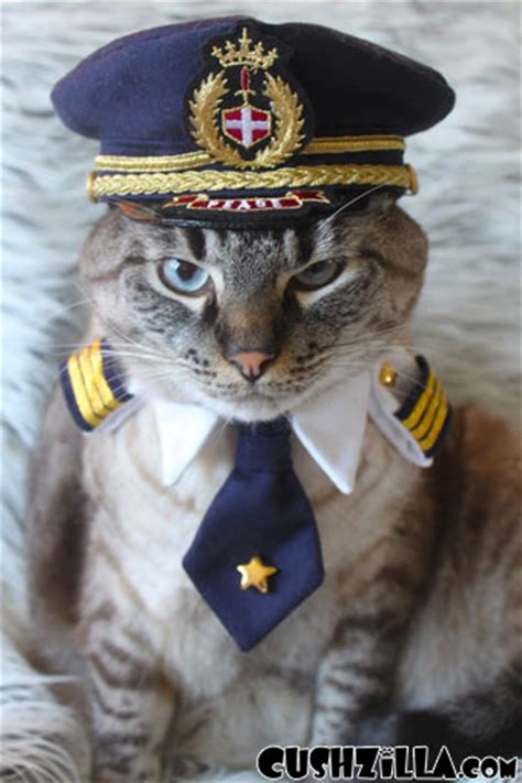 captain cat cushzilla captain kitty pilot uniform for cats and dogs small