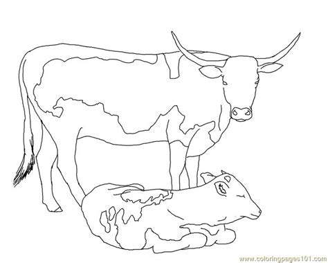 longhorn cow calf coloring page free cow coloring pages