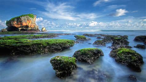 imagenes naturaleza maravillosas 5 mejores galer 237 as de fotos de la naturaleza para sentarse