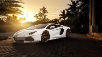Sports Cars Wallpapers Lamborghini Wallpaper Lamborghini Branca Carro Esportivo Fotos De