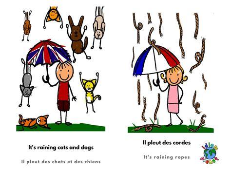 idiomplanet illustrated idioms idiomplanet expressions idiomatiques illustrã es franã ais anglais books il pleut des cordes en anglais pour chiens et chats