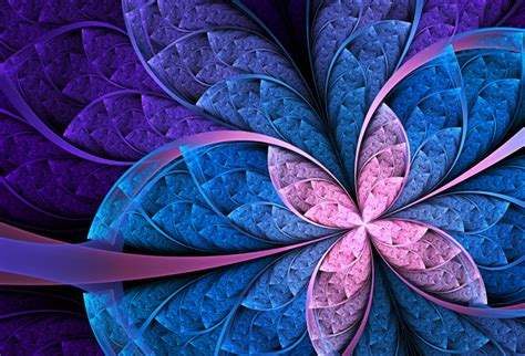 shop colorful flower abstract wallpaper  abstract theme