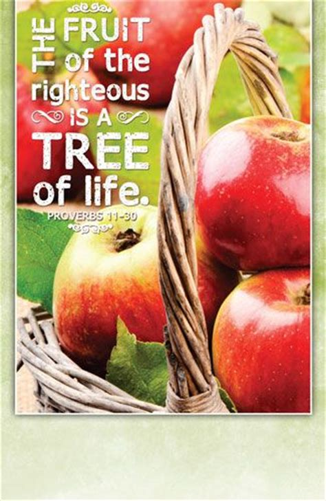 book of the righteous 5e books 10 best images about beautiful church programs on