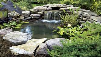 Small Backyard Fish Ponds by Fish Pond Designs Backyard Fish Pond Small Backyard Ponds