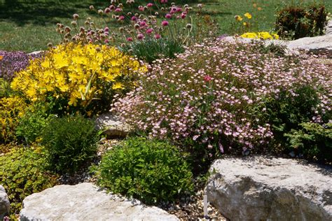 Rocks In The Garden How To Landscape With Rocks Hardscape Ideas
