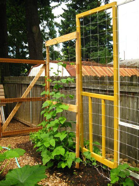 dave wilson nursery backyard orchard dave wilson nursery videos on backyard orchard organic