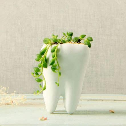 Large White Plant Pots Sale Large Ceramic Planters Image For Large Terracotta