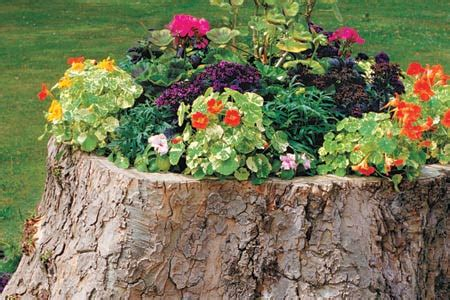 Around Tree Planter by How To Create A Tree Stump Planter This House