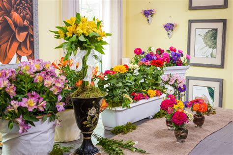 shirleys diy home flower cutting garden home