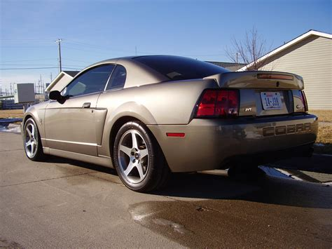 mustang cobra 2003 2003 ford mustang svt cobra other pictures cargurus