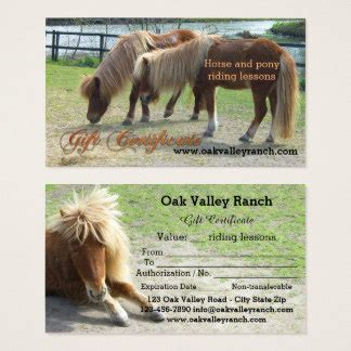 Certificate Templates Gifts Certificate Templates Gift Ideas On Zazzle Ca Horseback Lesson Gift Certificate Template