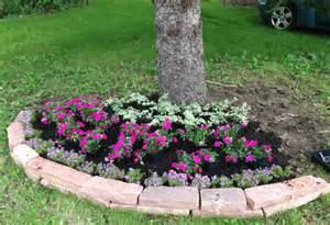 step by step ideas for landscaping com