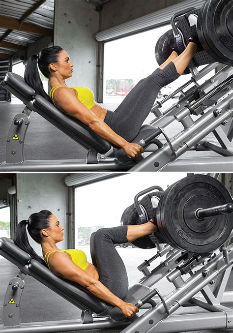 Incline Leg Press Sled Weight by Use Incline Leg Press For Your Muscles Corner