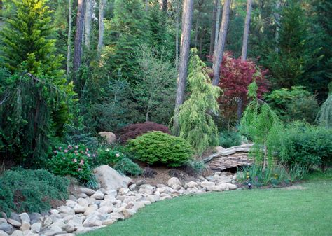 Conifer Garden Ideas 1000 Images About Conifers On Pinterest Clinton Iowa Evergreen And Blue Spruce
