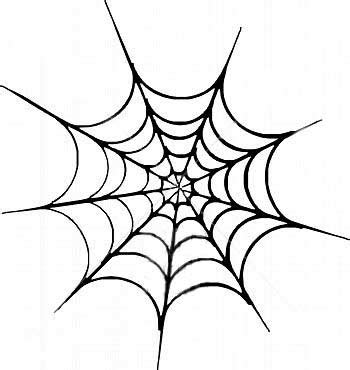 spider web tattoo design spider web pictures pics images and photos for your
