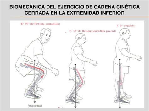 cadena cinetica - Cadena Cinetica Voleibol
