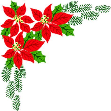 imagenes flores de nochebuena aviso de reparto de circular de la flor de pascua blog