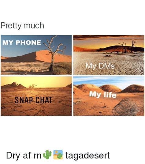 Dry Phone Meme - pretty much my phone snap chat y dms my life dry af rn
