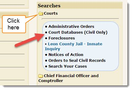 Florida Civil Court Search Search County Criminal Court Cases Inspectadate