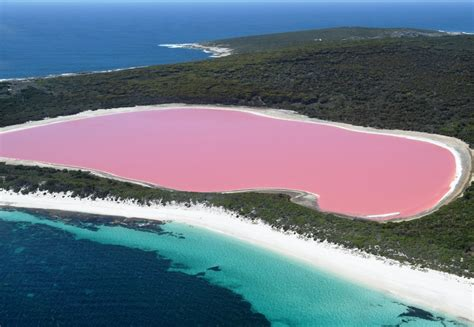 pink lake pink lake tourist park family parks