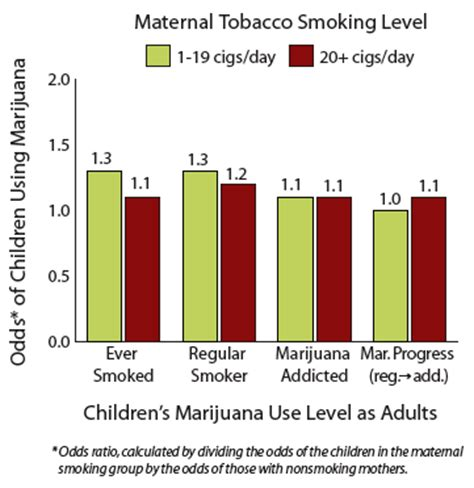 Does Tabacco Affect Thc Detox by Health Exposure In Utero Increases Risk Of Later