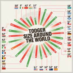 average size a very important guide to penis size around the world