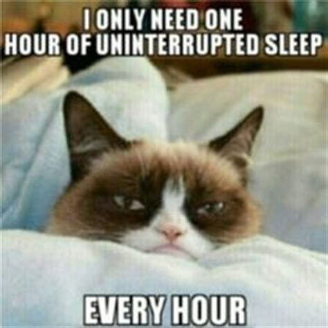 Sleepy Cat Meme - sleepy cat memes image memes at relatably com