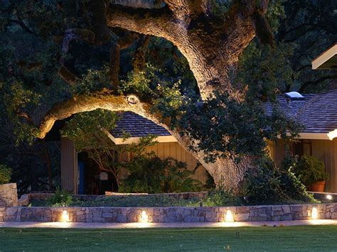Landscape Up Lighting Fascinating Landscape Lighting Ideas That Will Your Mind