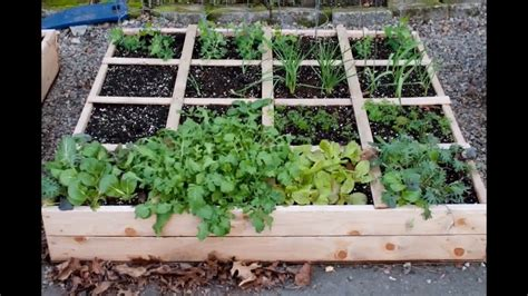Raised Bed Garden Design Raised Garden Bed Design Raised Bed Vegetable Garden Layout