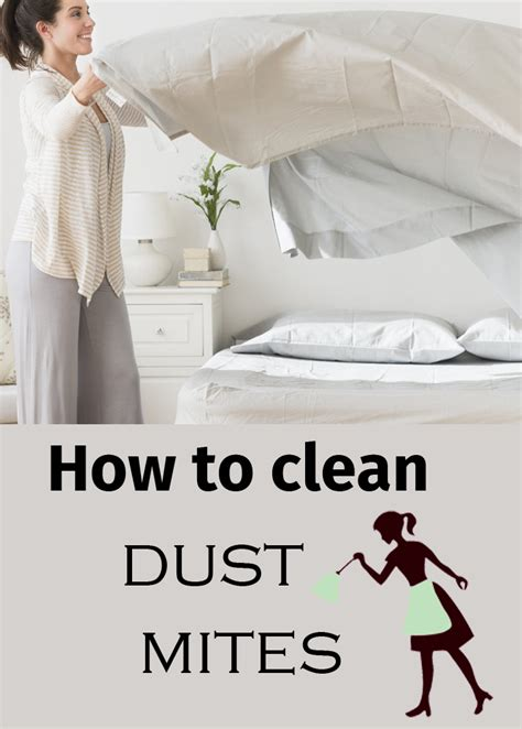 How To Clean Dusty by How To Clean Dust Mites Cleaning Tips