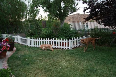 garden fencing ideas   dogs  photograph tophers